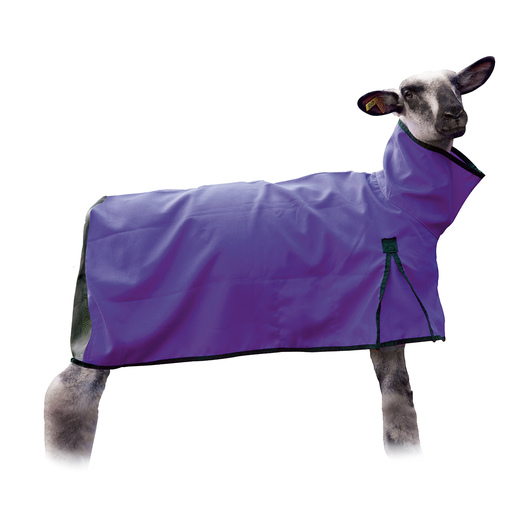Weaver' Sheep Blankets with Mesh Butt - Medium (110-140 lbs.), Purple