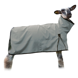Weaver' Sheep Blankets with Mesh Butt - Medium (110-140 lbs.), Gray