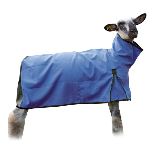 Weaver' Sheep Blankets with Mesh Butt - Medium (110-140 lbs.), Blue