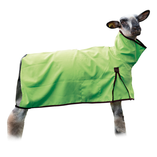 Weaver' Sheep Blankets with Mesh Butt - Small (80-120 lbs.), Lime