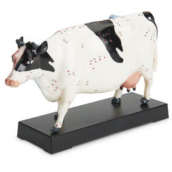 Acupuncture Models - Cattle