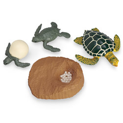 Incredible Creatures® Set - Life Cycle of a Green Sea Turtle