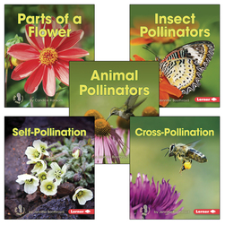 Pollination Books