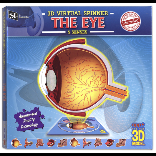 3-D Virtual Spinner: Eye