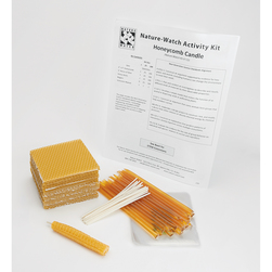 NatureWatch Honeycomb Candle Activity Kit