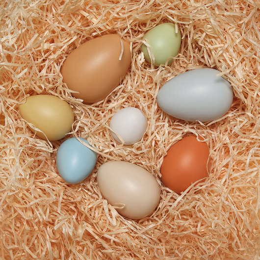 Size-Sorting Eggs