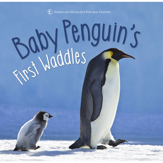 First Discoveries Book - Baby Penguins First Waddles