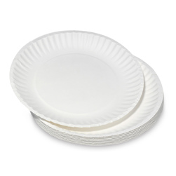 Plates - Paper - 9 in. - pk/40