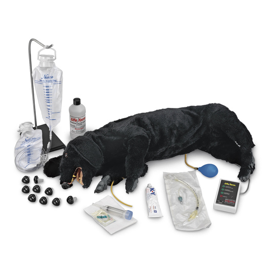 <strong>Life/form®</strong> Advanced Sanitary CPR Dog
