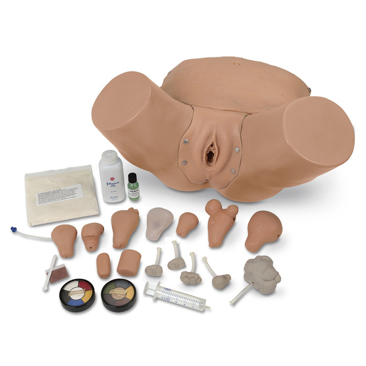 Life/form® Advanced Pelvic Examination and Gynecological Simulator - LF01235