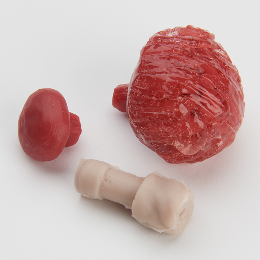 <strong>Life/form®</strong> Micro-Preemie Simulator - Replacement Kit