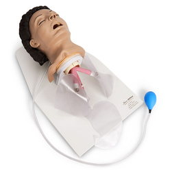 <strong>Life/form®</strong> Adult Airway Management Trainer with Stand