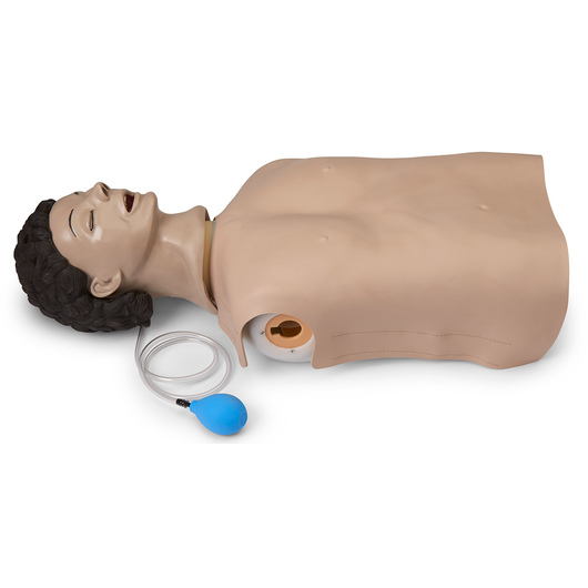 <strong>Life/form®</strong> Adult Airway Management Trainer Manikin