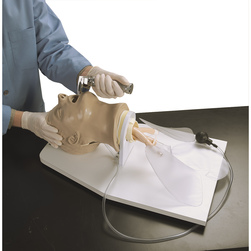 <strong>Life/form®</strong>  in.Airway Larry in. Airway Management Trainer with Stand