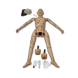 <strong>Life/form®</strong> Basic Manikin with Carry Case