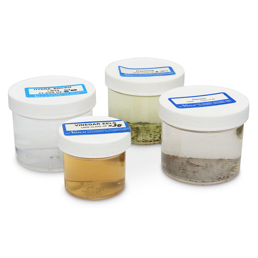 Invertebrate Culture Set - for Class of 30