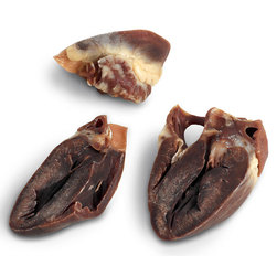 Nasco Solid Dry-Preserved Swine Heart, Preserved
