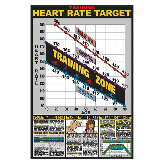 Training Heart Rate Target Chart - 24 x 36
