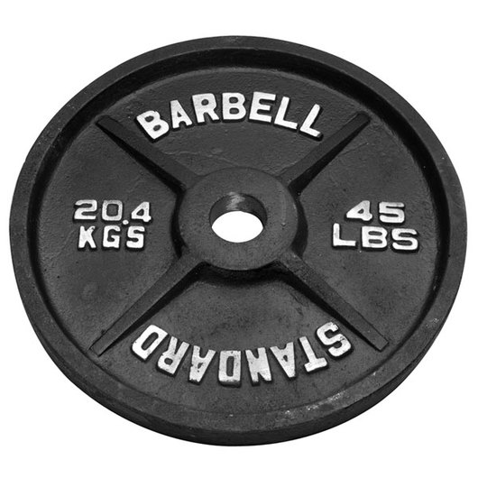 45 Lb Olympic Weight Plate Dumbbells Fitness Equipment Physical Amp Health Education
