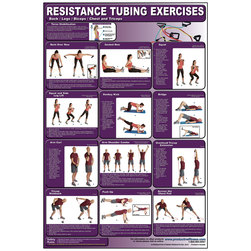 Resistance Tubing Exercises for Back, Legs, Biceps, Chest, & Triceps Poster
