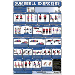 Dumbbell Exercises for Shoulders and Arms Poster
