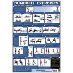 Dumbbell Exercises for Lower Body, Core, Chest, and Back Poster
