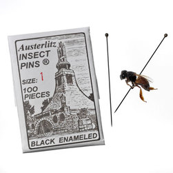Insect Pins - Size 1