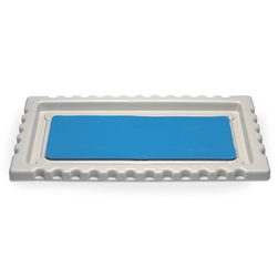 Nasco Large Dissection Tray with Disecto FlexPad
