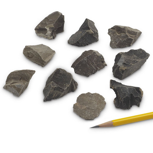 Shale (Black, Fissle) - Bag of 10 (3 cm x 4 cm Specimens)