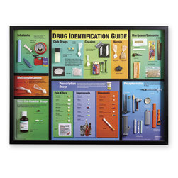 Large Drug Identification Display - 32 in. x 24 in.