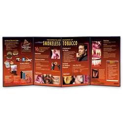 Smokeless Tobacco Folding Display