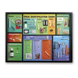 Large Drug Identification Display and Case