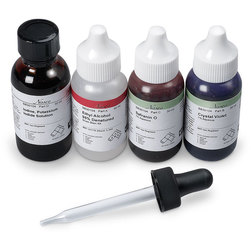 Nasco Gram Stain Kit