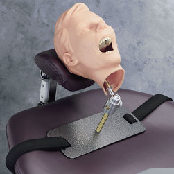 Pediatric XRay Dental Manikin