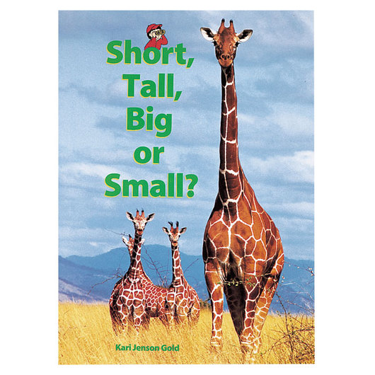 Early Math Big Book - Short, Tall, Big or Small?