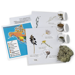 EcoQuest® Biomes Comparison Kit