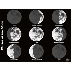 Enlarged Moon Poster