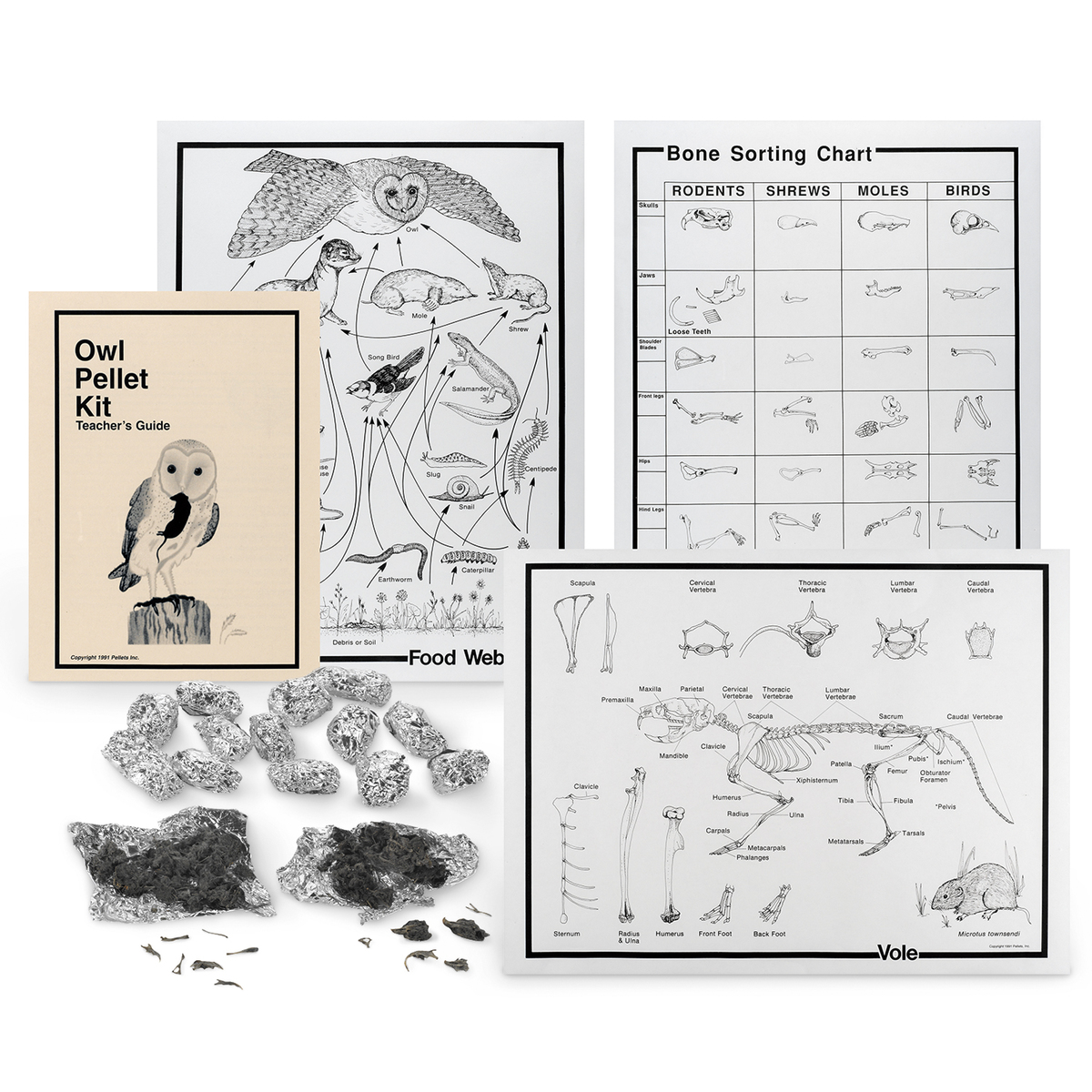 pack of 15 Extra-large barn owl pellets with bone sorting sheet