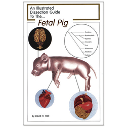 An Illustrated Dissection Guide, Fetal Pig