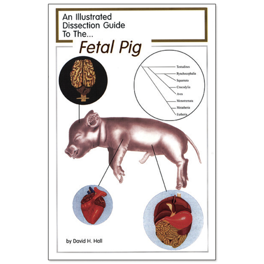 An Illustrated Dissection Guide to the Fetal Pig