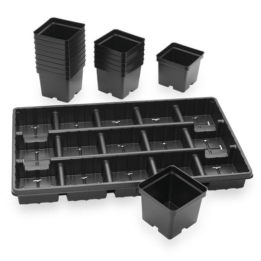 Vacuum-Formed Square Pots with Tray - Set of 15 - 4-1/5 in. L x 4-1/5 in. W x 3-3/5 in. D