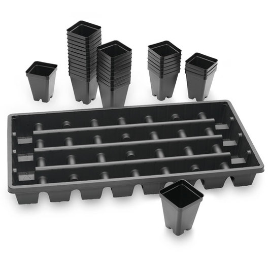 Vacuum-Formed Square Pots with Trays - Set of 32 - 2-1/2 L x 2-1/2 W x 3-1/2 D