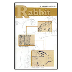 Rabbit Dissection Guide