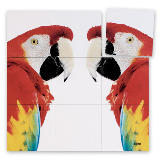 parrot and panda puzzle