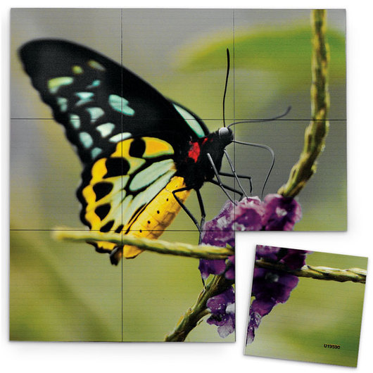 Nasco Magna-Square Butterfly Puzzle