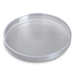 Petri Dish - 150 mm Diameter