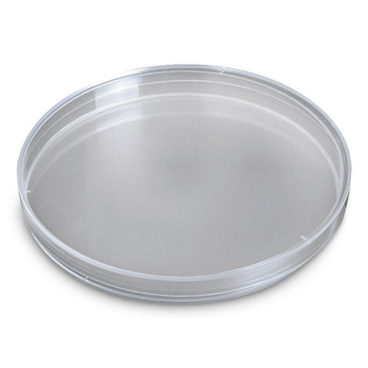 Single Petri Dish - 150 mm Diameter