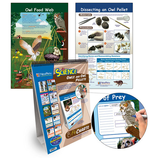 NewPath Learning® Owls and Owl Pellets Flip Chart
