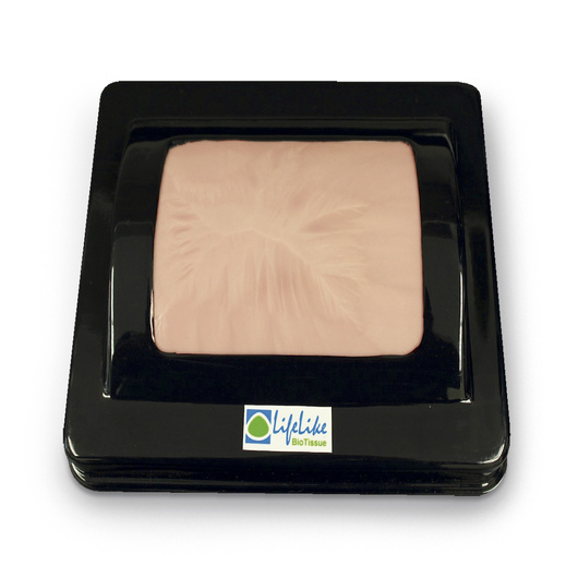 LifeLike BioTissue Double Layer Skin with Skin Base Holder