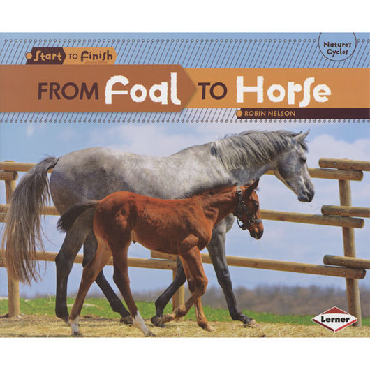 From Start to Finish Life Cycles Book - From Foal to Horse